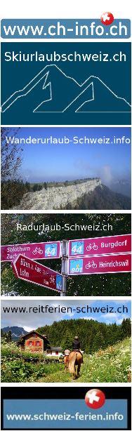 immobilienportale schweiz